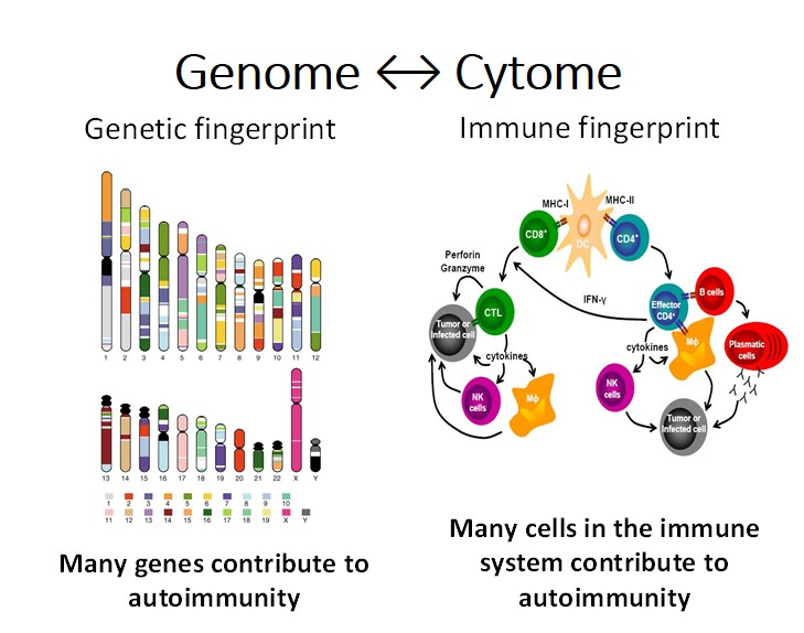 Genome Cytome